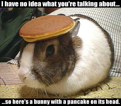 http://zerro.cool.free.fr/galleries/Images/bunny_pancake.jpg